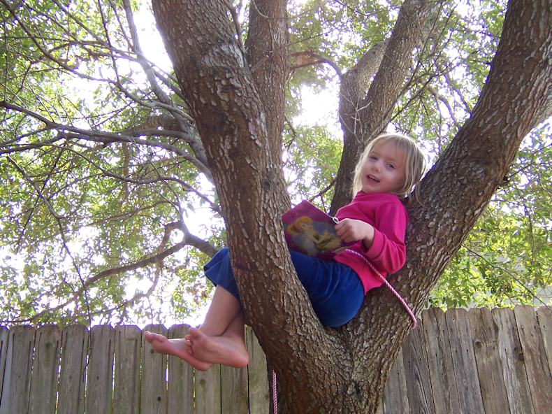 fun_in_tree