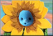sunflower_kommint
