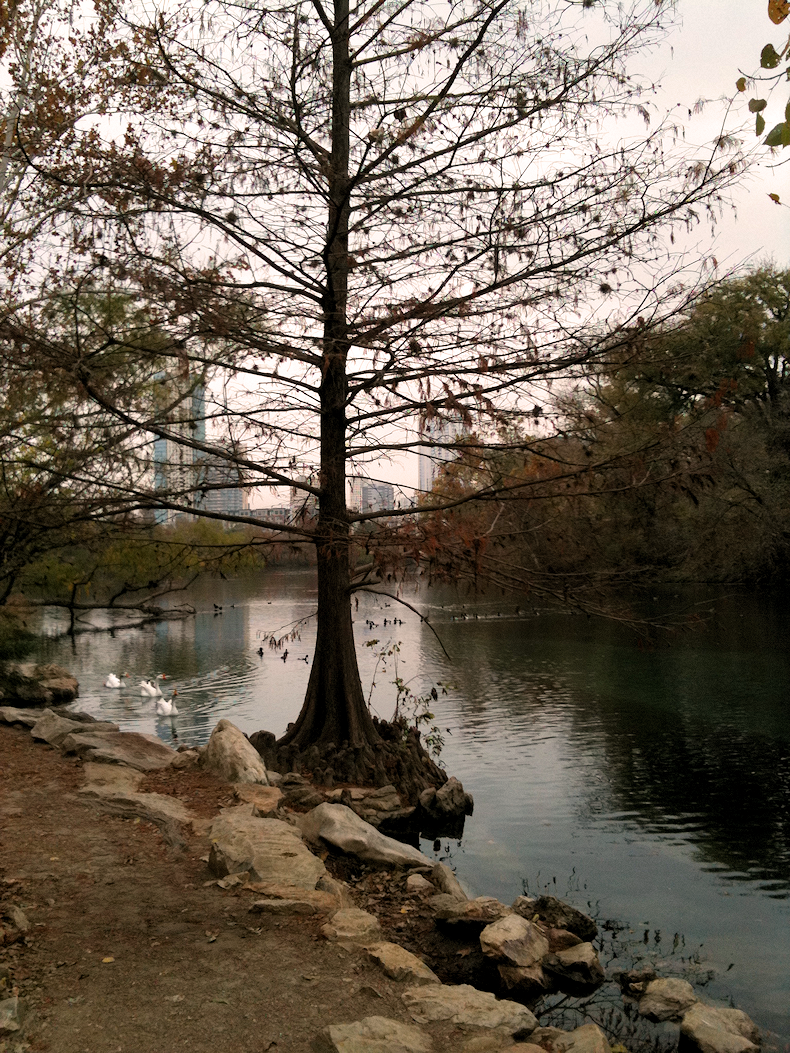 Austin_Trail_Fall_2010