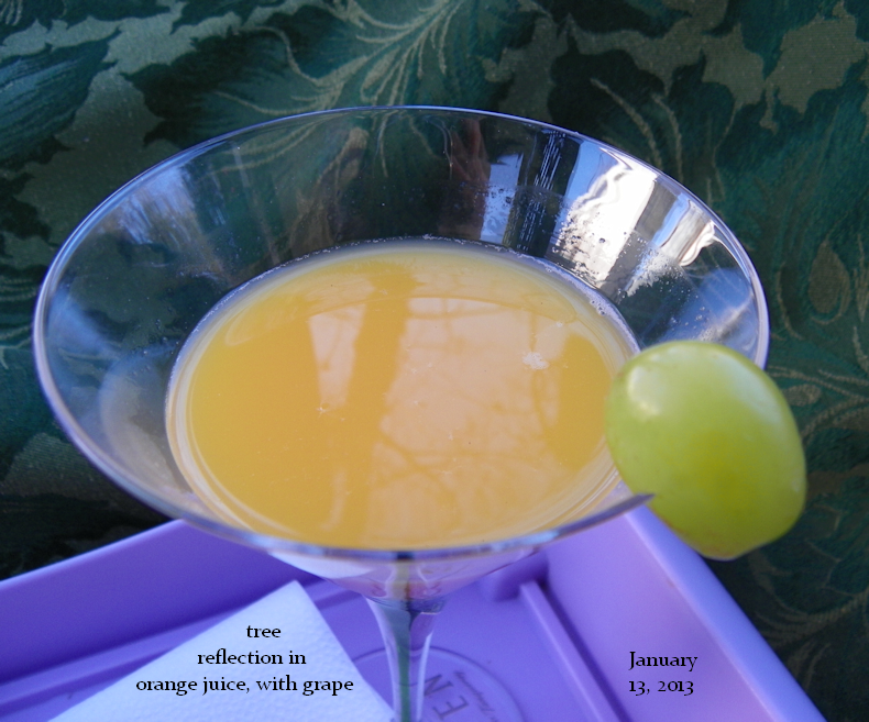 tree_reflection_in_orange_juice_with_grape