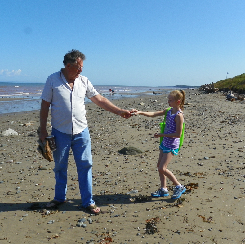 shell_collectors_2014